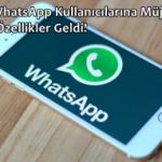 İOS WhatsApp Kullanıcılarına Müjde! Yeni Özellikler Geldi!