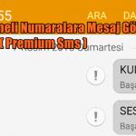 Dört Haneli Numaralara Mesaj Gönderme Sorunu ( Premium Sms )
