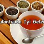 Mide Bulantısına İyi Gelen 6 Çay