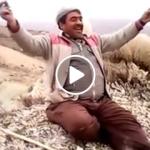 Koyun Güderken Türkü Söyleyen Komik Çoban Amca