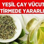Yeşil Çay Vücut Geliştirmede Yararlı Mıdır?