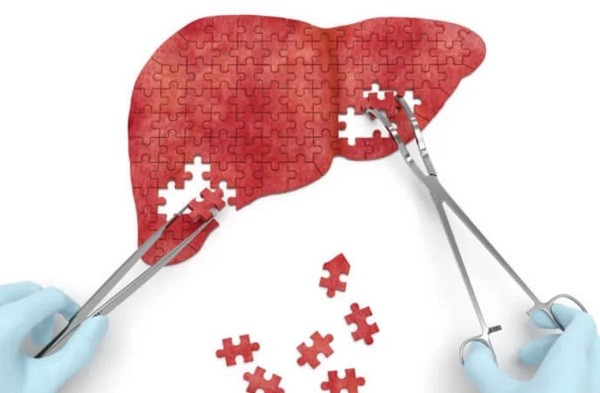 Teknoloji Sınır Tanımıyor Dalaktan Karaciğer Ürettiler