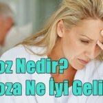 Menopoz Nedir? Menopoza Ne İyi Gelir?